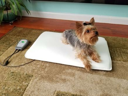 OMI PEMF Mini-Mat for Pets