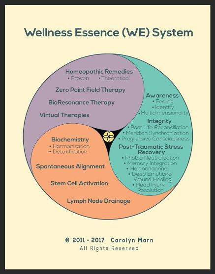 Wellness Essence System Chart